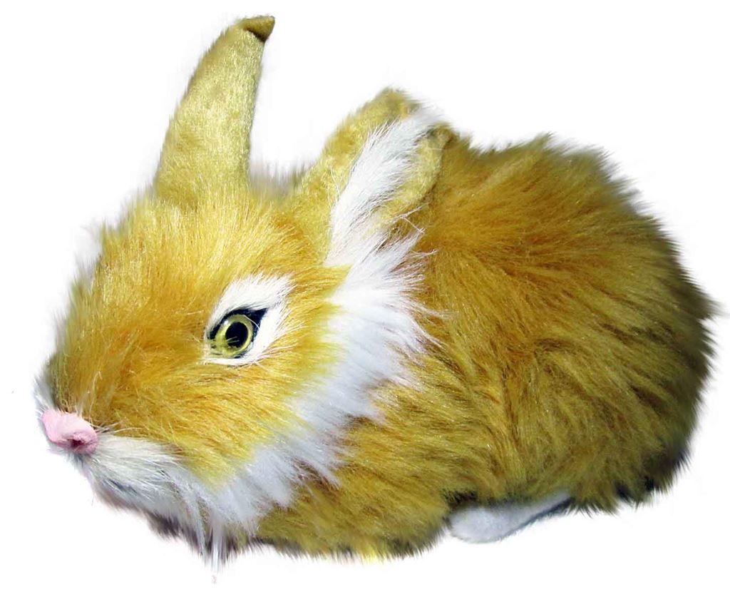Контакты.  Категории товаров.  Сувенир из натурального меха Кролик А741.  Новинки.  О компании.
